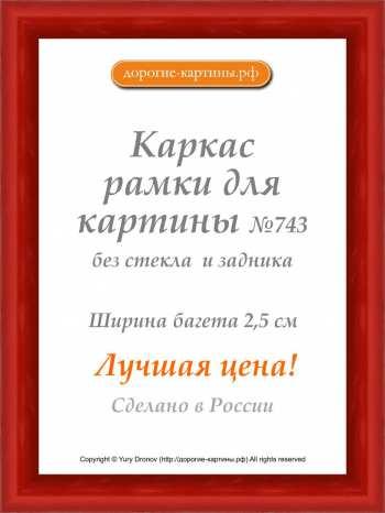 Рама №743 42x42см Красная. Фоторамки. Рамы для картин.