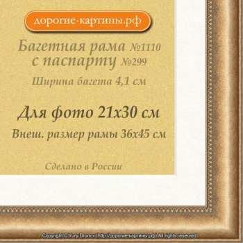 Фоторамка №1122 с паспарту для 21x30