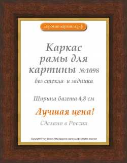 Рама №1098 50x100 см Коричневая