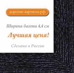 Рама №1099 50x100 см Черная с серебром