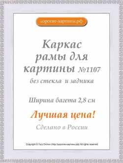 Рама №1107 50x100 см Белая