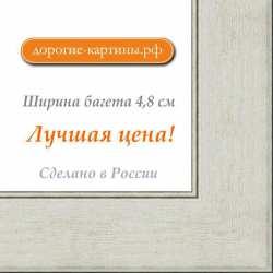 Рама №1109 70x100 см Серебро