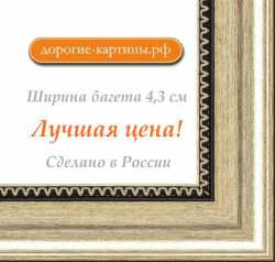 Рама №1114 100x120 см Серебро