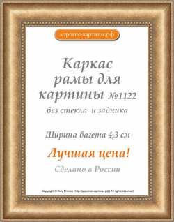 Рама №1122 40x50 см Бронза
