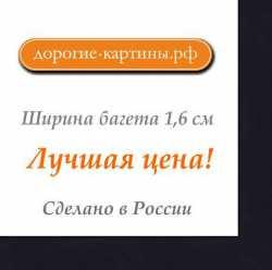 Рама №1125 40x60 см (А2) Черная