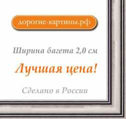 Рама №1158 30x40 см (A3) Серебряная