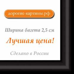 Рама №740 42x42см Черная