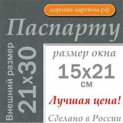 Паспарту 21х30см (А4) №145