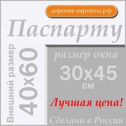 Паспарту А2 40x60 см №194