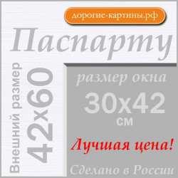 Паспарту А2 42x60 см №194