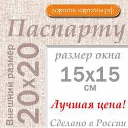 Паспарту 20х20 см №5