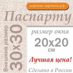 Паспарту 30х30 см №5