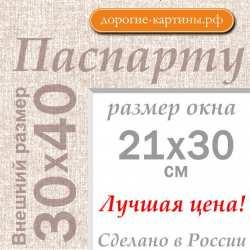 Паспарту А3 30х40 см №5