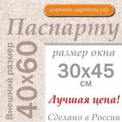 Паспарту А2 40х60 см №5