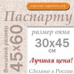 Паспарту А2 45х60 см №5