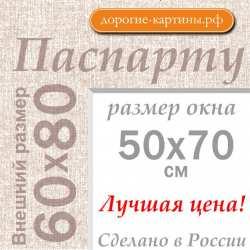 Паспарту А1 60х80 см №5
