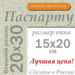 Паспарту А4 20x30 см №9