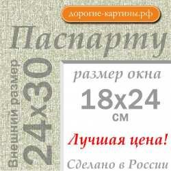 Паспарту 24х30 см №9