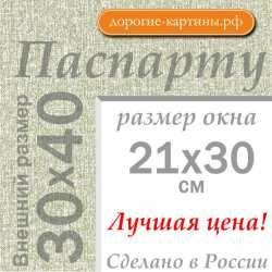 Паспарту А3 30х40 см №9