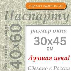 Паспарту А2 40х60 см №9
