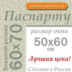Паспарту 60х70 см №9