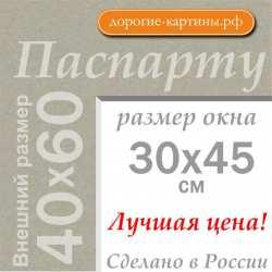 Паспарту А2 40х60 см №2