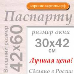 Паспарту A2 42x60 см №185