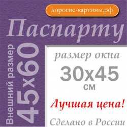 Паспарту A2 45x60 см №178