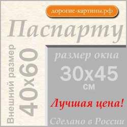 Паспарту A2 40x60 см №299