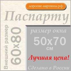 Паспарту A1 60x80 см №299