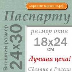 Паспарту 24x30 см №173