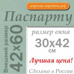 Паспарту A2 42x60 см №173