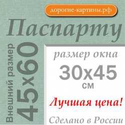 Паспарту A2 45x60 см №173