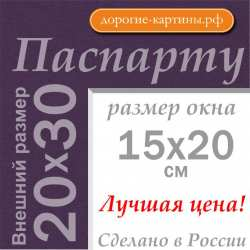 Паспарту A4 20x30 см №179