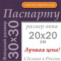 Паспарту 30x30 см №179