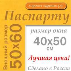 Паспарту 50x60 см №169