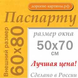 Паспарту A1 60x80 см №169