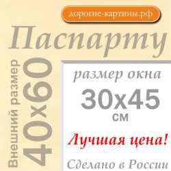 Паспарту A2 40x60 см №1
