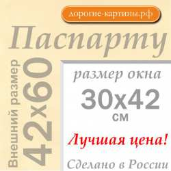 Паспарту A2 42x60 см №1