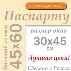 Паспарту A2 45x60 см №1