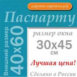 Паспарту A2 40x60 см №175