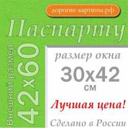 Паспарту A2 42x60 см №172