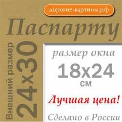 Паспарту 24x30 см №166