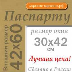 Паспарту A2 42x60 см №166