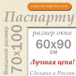 Паспарту 70х100 см №3