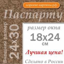 Паспарту 24х30 см №12