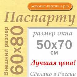 Паспарту A1 60x80 см №165