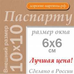 Паспарту 10х10 см №203