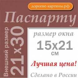 Паспарту 21х30 см (A4) №206