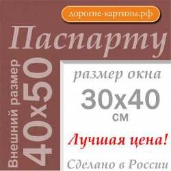 Паспарту 40х50 см №206
